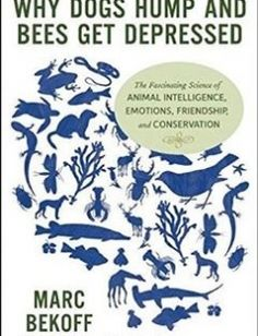 Why Dogs Hump and Bees Get Depressed The Fascinating Science of Animal Intelligence Emotions Friendship and Conservation free download by Marc Bekoff ISBN: 9781608682195 with BooksBob. Fast and free eBooks download.  The post Why Dogs Hump and Bees Get Depressed The Fascinating Science of Animal Intelligence Emotions Friendship and Conservation Free Download appeared first on Booksbob.com.