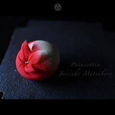 #一日一菓 #菓道 「 #ポインセチア 」 #wagashi of the Day #poinsettia #煉切  製  #針切り  本日はポインセチアです。 来週はもぅクリスマスですね。  #JunichiMitsubori #和菓子 #一菓流 #ART #アート #dope