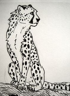 how to draw a cute cheetah step by step