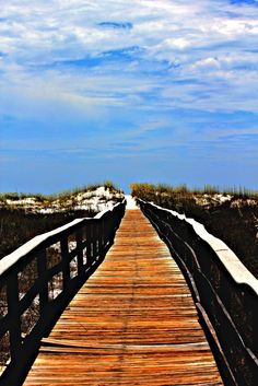 Shell Island - Panama City Beach, FL