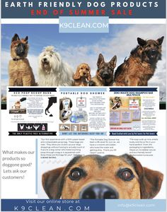 Earth Friendly Dog Products