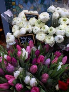 Paris flower market: Tulips and Ranaculus