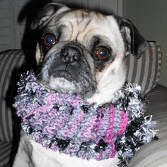 Cowlette for your pet will keep his/her neck by PetrocyStudios, $10.00