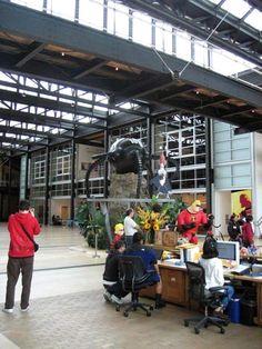 los interiores de los estudios de Pixar-13  yo trabajo en un lugar como ese casi gratis!!! :D