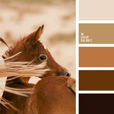 beige, color canela, color del chocolate lechoso, color piel de caballo, combinación de colores, elección del color, marrón rojizo, matices cálidos del marrón, paleta de colores monocromática, paleta del color marrón monocromática, selección de colores, tonos marrones.