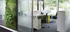 C+P Wasser- und Pflanzenwände als natürliche Trennwände im Büro