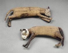 Two mummified cats, Egypt, 1200 – 700 BC. Ancient Tomb, Ancient Artifacts, Ancient Egypt, Ancient History, Art History, Kairo, Egyptian Cats, Egyptian Mummies, Post Mortem