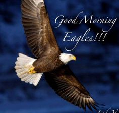 (¯`•♥•´¯)☆ *`•.¸(¯`•♥•´¯)¸ ☆ º ` `•.¸.•´ ` º ☆.¸¸.•´¯`•♥ GOD BLESS YOU! MAY YOU, LIKE THE EAGLE SOAR ABOVE ALL THE STORMS IN YOUR LIFE! W I S H I N G ~ Y O U ~ A ~ V E R Y~ B E A U T I F U L ~ S U N D A Y!! FLY HIGH EAGLE SPIRITS!!