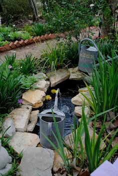 Could do something like this around our little pond - minus the watering cans