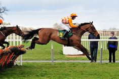 Bet on a Horse Race