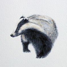 Sweet little badger by Gareth Hughes.