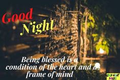 Top 450+ Good Night Blessings Images, Pictures For Praying Good Night Blessings, Frame Of Mind, Pray, Blessed, God, Movie Posters, Movies, Pictures, Image