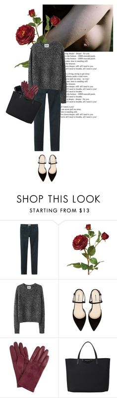 """""""dackelsetter"""" by rosa-loves-skittles ❤ liked on Polyvore featuring Toast, OKA, Acne Studios, John Lewis and Givenchy"""