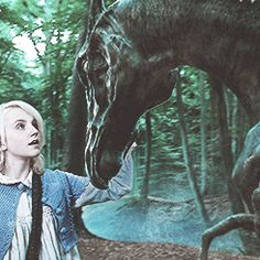 Harry Potter and the Order of the Phoenix: Luna Lovegood with a Thestral (GIF) Harry Potter Gif, Mundo Harry Potter, Harry Potter Books, Harry Potter Universal, Harry Potter Characters, Luna Lovegood, Evanna Lynch, Draco Malfoy, Severus Snape