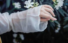 Asian Photography, Hand Photography, Kamisama Kiss, Cute Profile Pictures, King Of Fighters, Stylish Girl Pic, Soft And Gentle, Hand Art, Hanfu