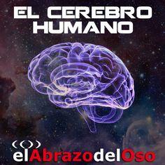 El Abrazo del Oso - El Cerebro Humano en Podcast El Abrazo del Oso en mp3(22/10 a las 17:48:34) 02:19:51 21606512  - iVoox