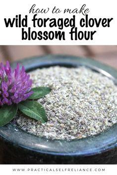 Healing Herbs, Medicinal Herbs, Herbal Tinctures, Herbalism, Edible Food, Dehydrated Food, Wild Edibles, Eating Organic, Frozen Meals
