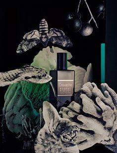 Mr L'Agent / Art direction / Florence Tetier / Fragrances