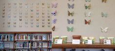 Butterfly display paired with free butterfly-friendly seeds for patrons to take home @ Hamline Midway Library