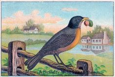 Free Vintage Clip Art - Brown Bird on Fence - The Graphics Fairy