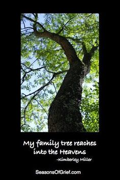 My family tree reaches into the Heavens - Kimberley Miller Missing My Son, Missing You So Much, I Miss Him, Miss You, My Champion, My Guardian Angel, Losing A Child, To Infinity And Beyond, Grief