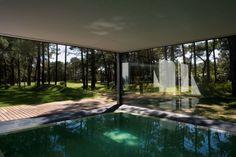 Schwimmbecken innen Einrichtungsidee-Villa Wald