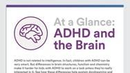 Graphic of: At a Glance- ADHD and the Brain