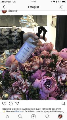 Çiçekleri suyla; ruhları güzel kokularla besleyin! ✨ Hemen #Fiolas'ın ferahlatıcı lavanta spreyleri ile tanışın, enerjinizi yükseltin! 🕺🏻 www.fiolas.com 💻