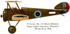 Camel Nightfighter