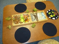 """Ephemeral Art or Earth Art: A beautiful presentation. I particularly like the mirrored tray. """"ephemeral art is temporary art created in the environment and designed to naturally erode, therefore only lasting for a short period of time.""""{from Mairtown Kindy}"""