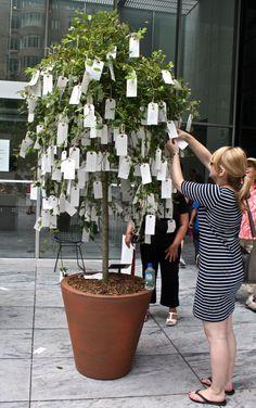 wishing tree or tree with positive brand messages Group Art Projects, Garden Projects, Wishing Tree Wedding, Decoration Vitrine, School Displays, Yoko Ono, Interactive Art, Tree Illustration, Trendy Tree