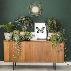Interior Home Design Trends For 2020 - New ideas Living Room Green, Green Rooms, Home Living Room, Living Room Decor, Bedroom Decor, Living Room Plants, Interior Inspiration, Room Inspiration, House Plants Decor