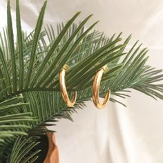 Vintage gold hoops in a unique 'J' shape. Amazing condition, no tarnishing or discolouration. Gold Hoops, Plant Leaves, Shapes, Amazing, Plants, Etsy, Vintage, Earrings, Ear Rings
