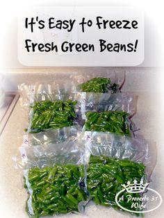 How to freeze fresh green beans. Easy to do, no special tools needed, . How to freeze fresh green beans. Easy to do, no special tools needed, is a great way to p Freeze Fresh Green Beans, Freeze Beans, Frozen Green Beans, Freezing Green Beans, Freezing Fruit, Beans Beans, Freezing Blueberries, Fresh Green Bean Recipes, Gastronomia