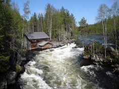 FI-Oulanka NP1.jpg
