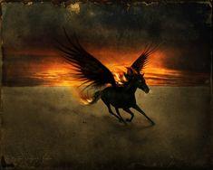 HD Desktop Wallpapers Free Online: The Most Magnificent Fantasy Creature Wallpapers Pegasus art Pegasus Fantasy creatures