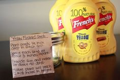 French's yellow mustard is crafted with our own stone ground, number 1 grade mustard seeds resulting in a rich, smooth, thick mustard. From @janetha #Frenchs #NaturallyAmazing #yellowmustard