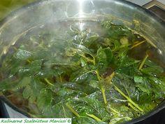 Sok z mięty :-) - Kulinarna Maniusia - blog kulinarny