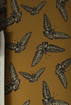 15 Flora and Fauna Wallpapers Acid Wallpaper, Textured Wallpaper, Beautiful Wallpaper, Conversational Prints, Timorous Beasties, Beautiful Bugs, Textiles, Flora And Fauna, Pattern Illustration
