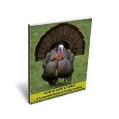 How to Hunt Turkey - a Complete Guide to Turkey Hunting by Samuel Page, http://www.amazon.com/dp/B0081LR4MW/ref=cm_sw_r_pi_dp_EyEbqb071QM06