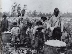 When enslaved males turned 15 years old–and younger in some cases–they had their first inspection. Boys who were under-developed, had their testicles castrated and sent to the market or used on the farm. Each enslaved male was expected to get 12 females pregnant a year. The men were used for breeding for five years. One enslaved man name Burt produced more than 200 offspring, according to the Slave Narratives.