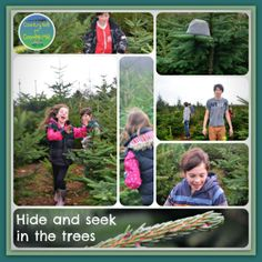 Hide and Seek in the Christmas Trees