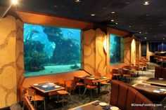 coral reef restaurant - table meal credit @ Epcot