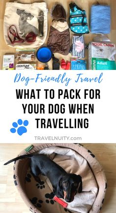 Dog Travel Packing List: What to Pack for Your Dog : Heading off travelling with your dog? Make sure you keep your dog comfortable and happy, by using this dog travel packing list. Road Trip With Dog, Packing List For Travel, Travel Tips, Travel Ideas, Packing Tips, Travel Essentials, Dog Water Bowls, Dog Travel, Family Travel