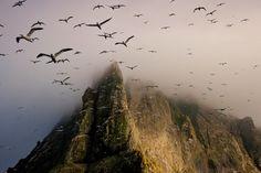 Borerary / St. Kilda, Scotland - inspiring picture on Joyzz.com