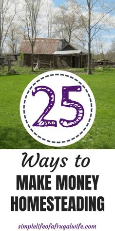 25 ways you can make money homesteading!