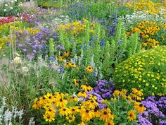 Summer Gardening Hints | thegardengeeks