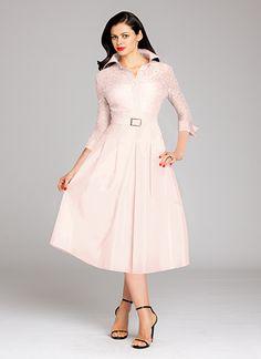 Blush Lace and Taffeta Shirtdress