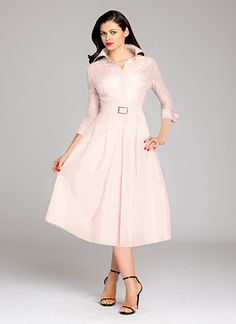 Blush Lace and Taffeta Shirtdress