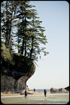 Vacation dreaming for that far-off day when I have time off: West Coast Trail, BC